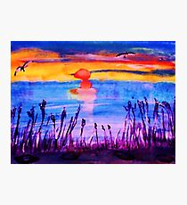 Sunset over the Reeds, watercolor Photographic Print