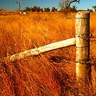 Gatepost in Gold by Michael Matthews
