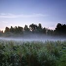Misty Meadow at Sunrise by Phill Sacre
