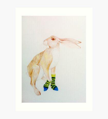 Striped Socks Art Print