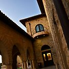 Stanford Campus  by VincenzoL
