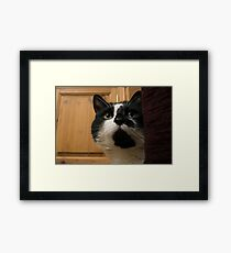 patch. Framed Print