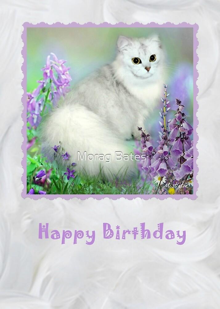 Mistletoe The Silver Shaded Chinchilla Persian Cat Birthday Card By