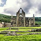 Tintern Abbey by KarenM