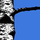 Tree by Graham Hiscock