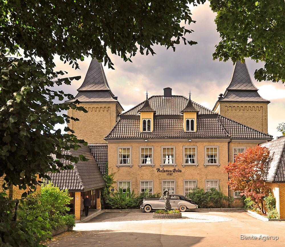 Refsnes Castle by Bente Agerup