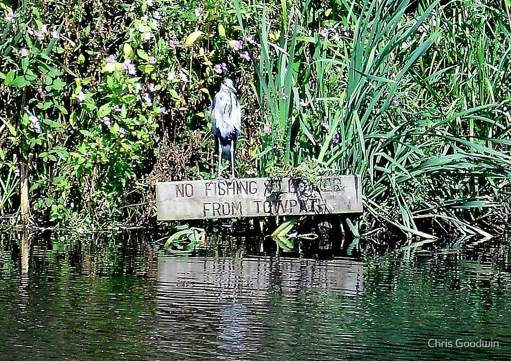 No Fishing Allowed by Chris Goodwin