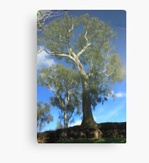 Goulburn Dreaming Canvas Print