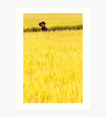 Golden Harvest - Dali, China Art Print