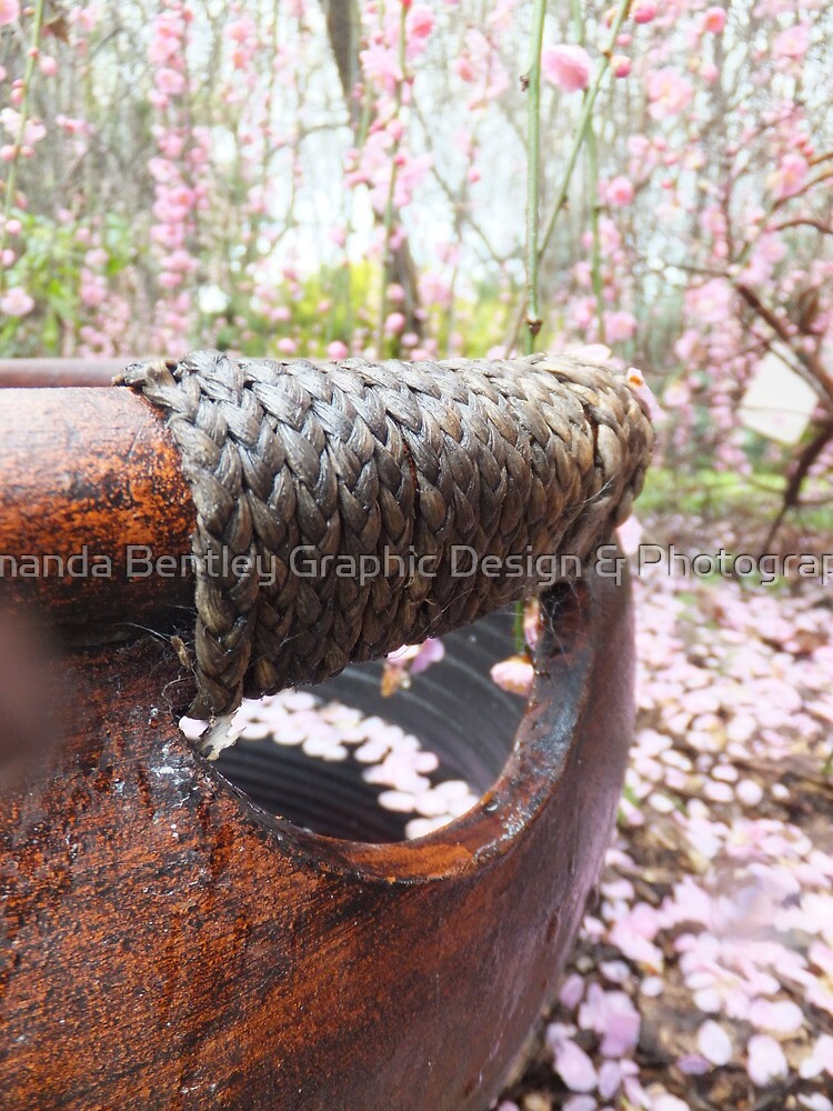 Pink Tree by Amanda Bentley Graphic Design & Photography