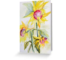 Face Toward the Sunflowers Greeting Card