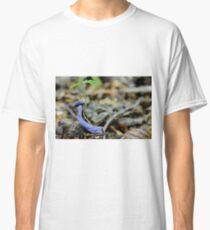 Laccaria amethystina Classic T-Shirt