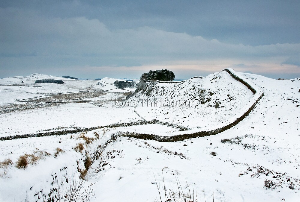 Housesteads Crag by Joan Thirlaway
