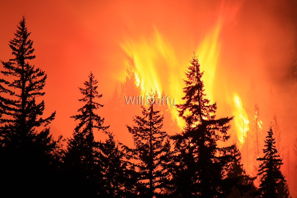 Fire Storm by Will Duffy
