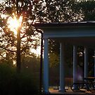 Early Morning at Lewinsville Park, VA by Bine