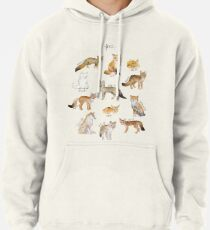 Foxes Pullover Hoodie