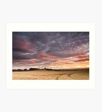Field with a bump Art Print