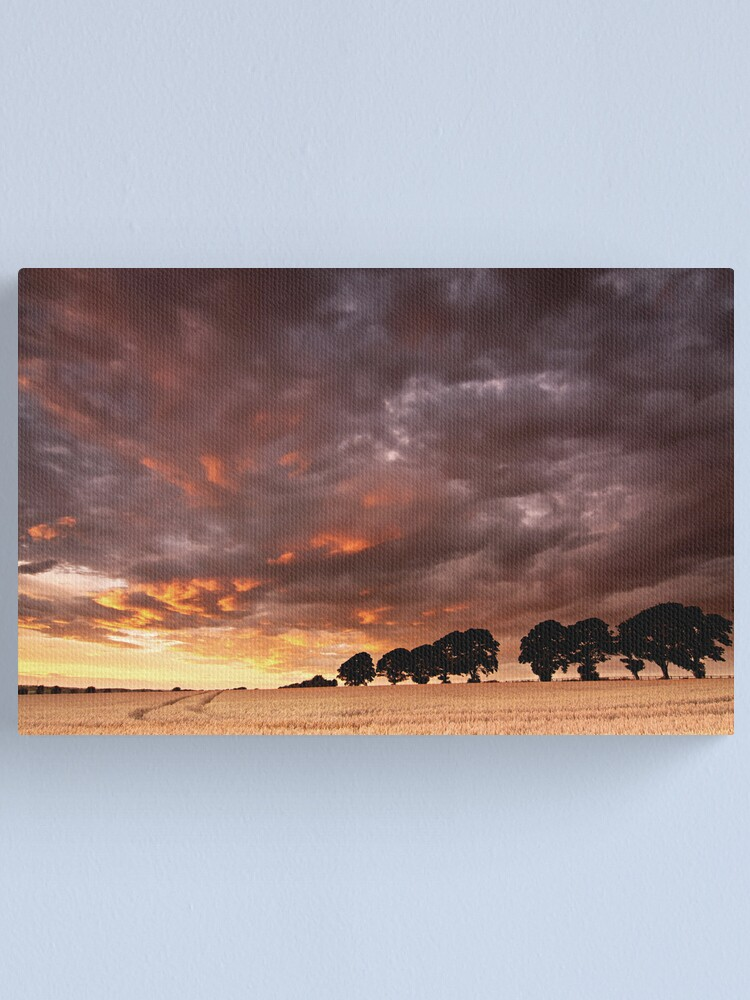Alternate view of Sweeping past Canvas Print