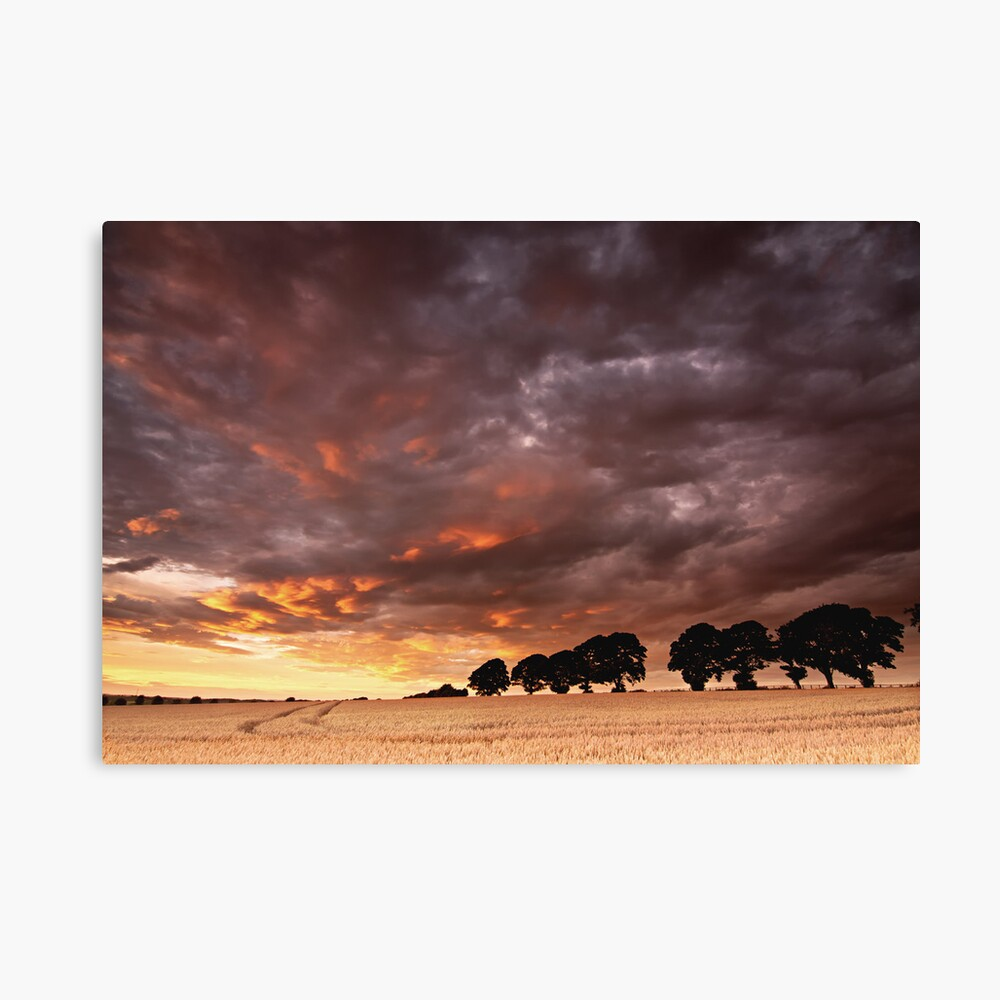 Sweeping past Canvas Print