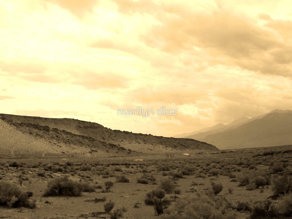 Desert Scene by marilyn diaz