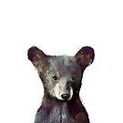 Kleiner Bär von Amy Hamilton