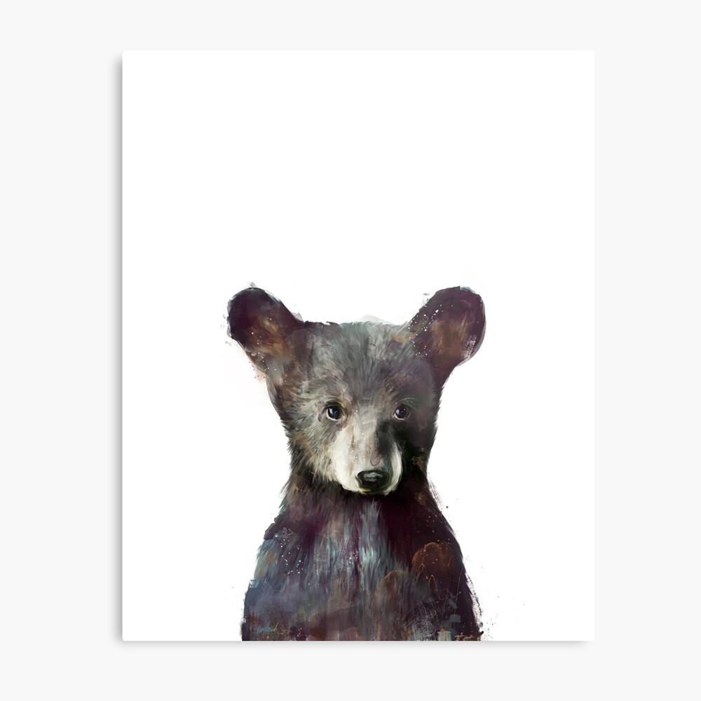 Kleiner Bär Metallbild