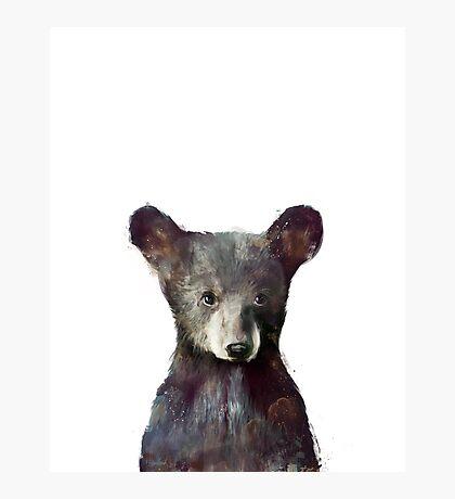 Little Bear Photographic Print