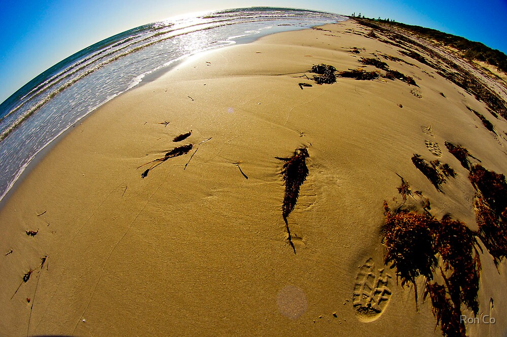 South beach, Pt Hughes,using fisheye  perspective by Ron Co