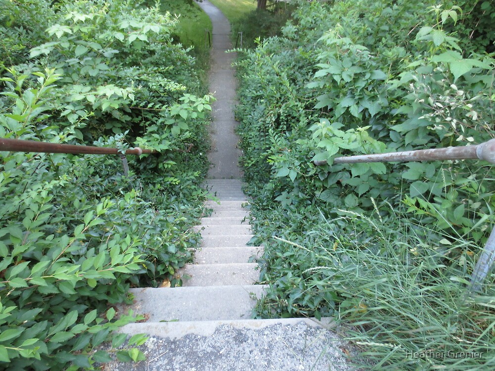 Down the Narrow Stairs by Heather Grenier