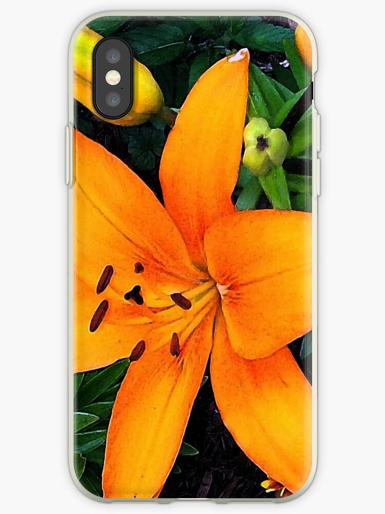 Orange Asiatic Lily by Shawna Rowe