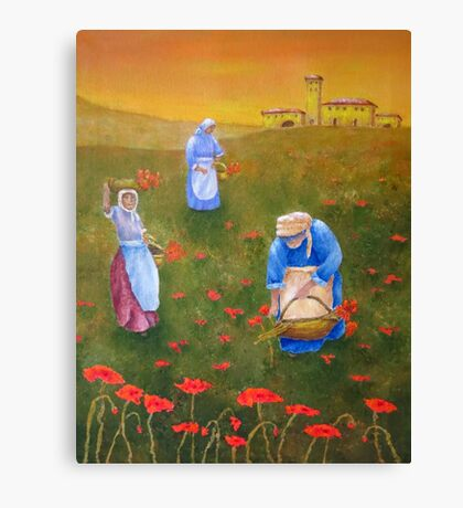 Harvesting Poppies in Tuscany Canvas Print