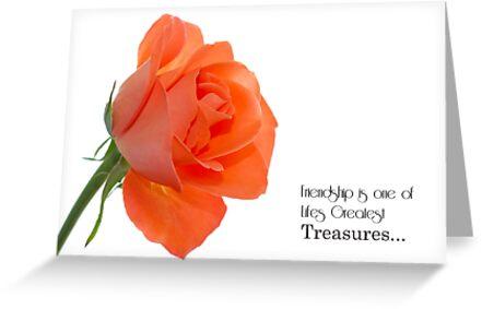 Peachy Rose by Kim Andelkovic