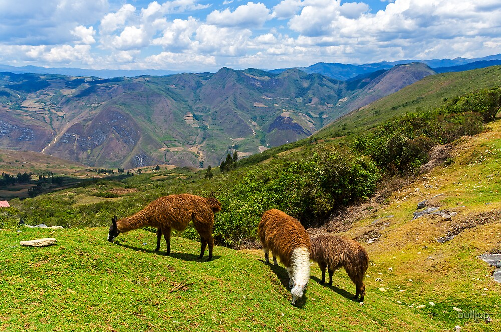 Kuelap3, Peru by bulljup