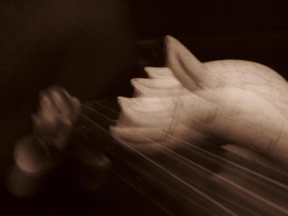 violin by Marmellino
