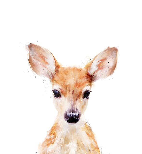 Little Deer by Amy Hamilton