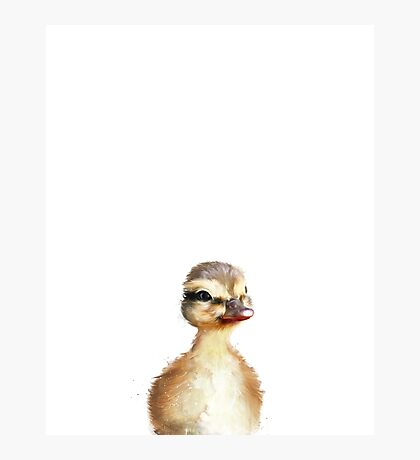 Little Duck Photographic Print