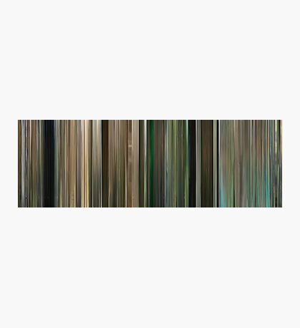 Moviebarcode: Four Lions (2010) Photographic Print