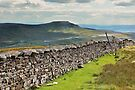 Ingleborough From Whernside by Mat Robinson