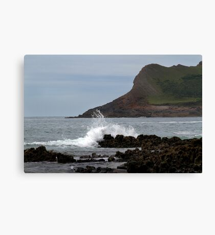 View From Mewslade Bay Canvas Print