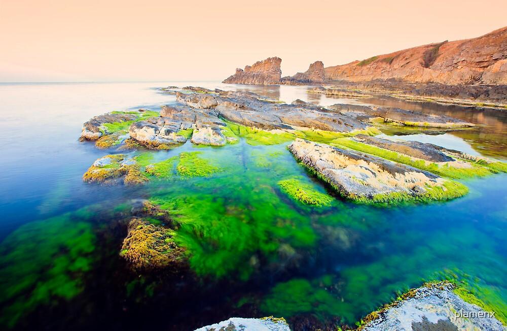sunrise of the amazing shore by plamenx