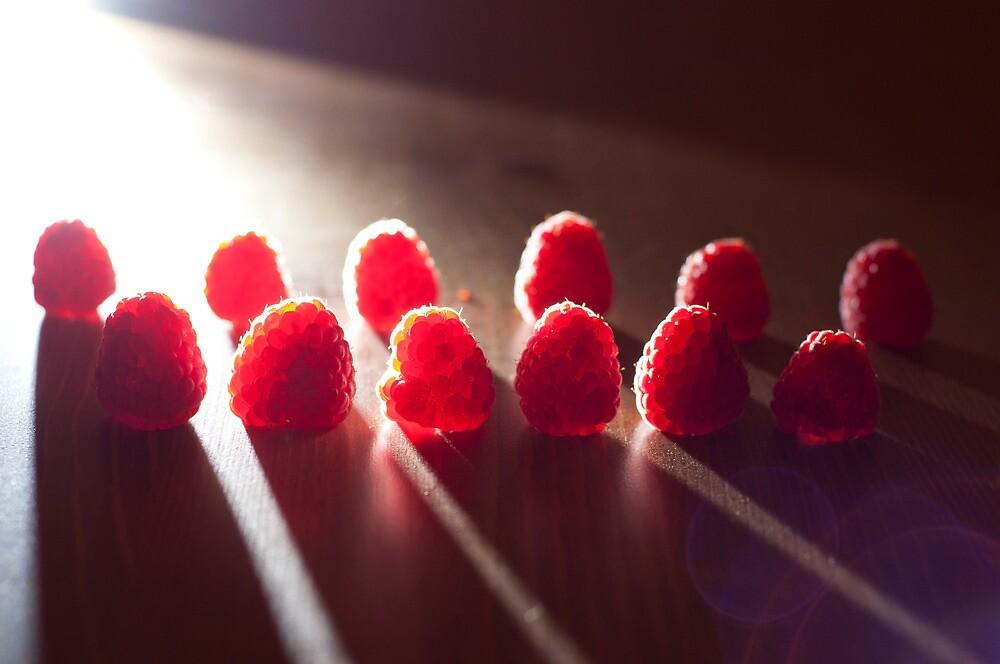 Dramatic Raspberries by Abby Thompson