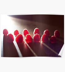 Dramatic Raspberries Poster