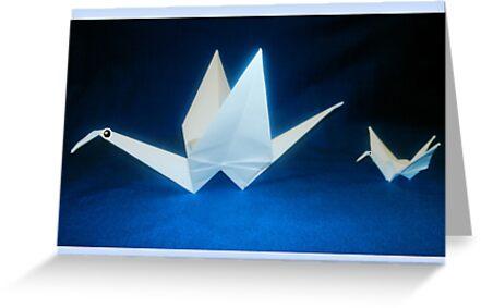 Paper Cranes by Raymond Lo