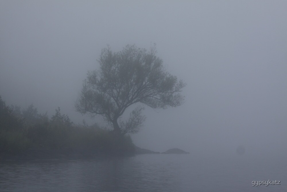 Foggy Day on the Lake by gypsykatz