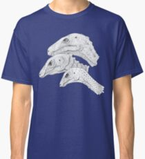 Morrison Dinosaurs 1 Classic T-Shirt