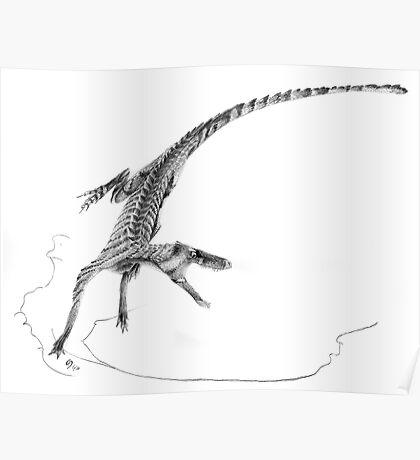 Hesperosuchus Speed Turn Poster