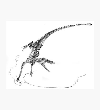 Hesperosuchus Speed Turn Photographic Print