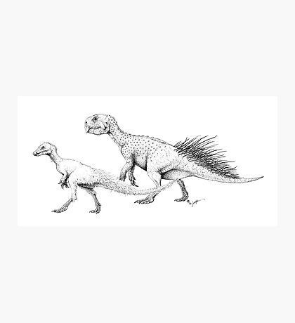 Ornithischians, Enquilled Photographic Print