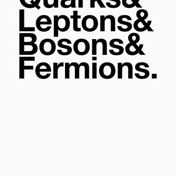 Quarks & Leptons & Bosons & Fermions. - black design by BoomShirts