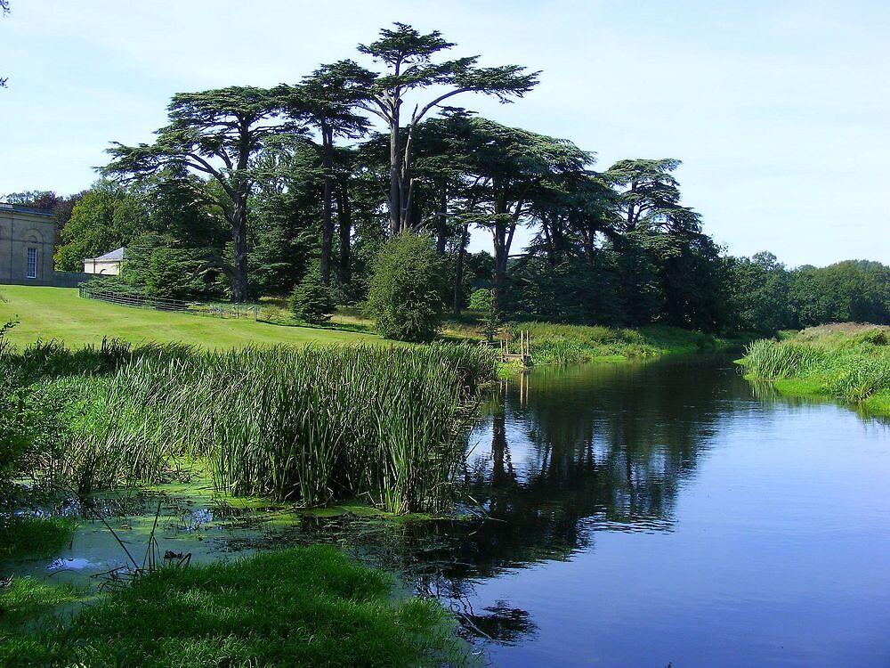 Attingham Park by Dave646